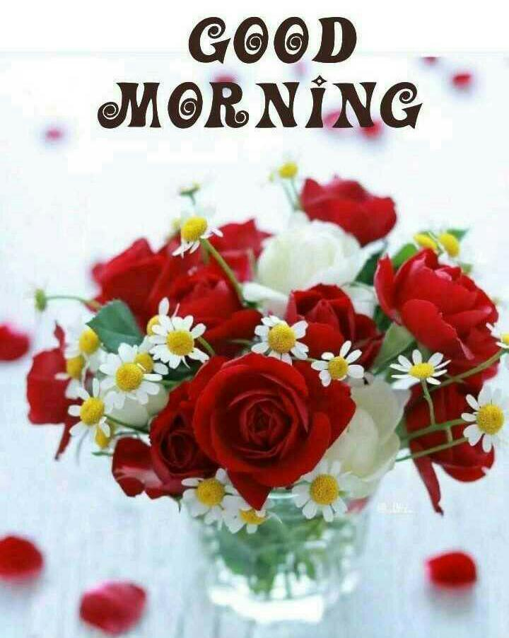 Good Morning Images For Whatsapp Free Download Hd Wallpaper Pictures Photos Of Good Morning Mixing Images