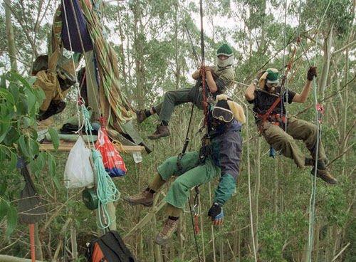 """Earth Liberation Front: ações teatrais para impressionar """"moderados"""""""