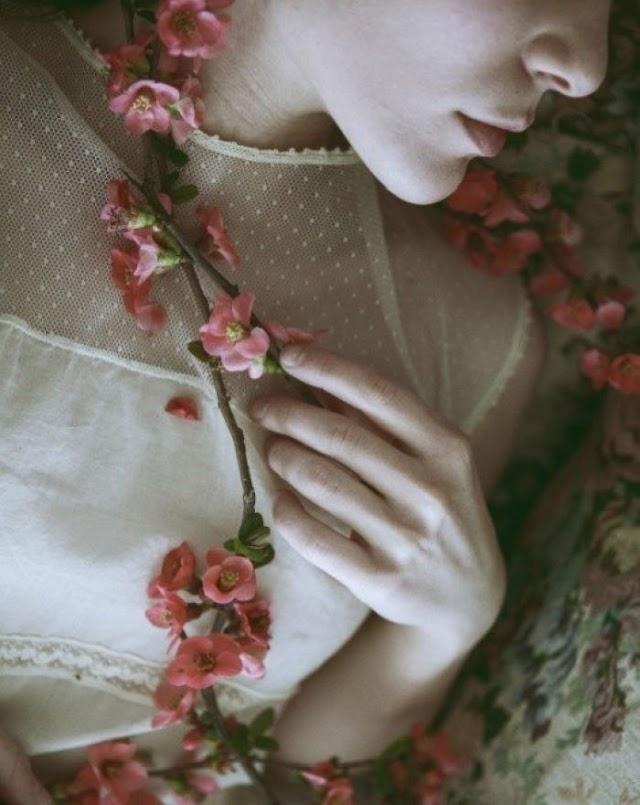 साकुरा की यादें  — विनोद भारद्वाज संस्मरणनामा - 34   Vinod Bhardwaj on Sakura, Cherry Blossom