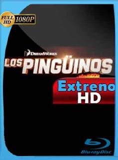 Los pingüinos de Madagascar 2014 HD [1080p] Latino [Mega] dizonHD