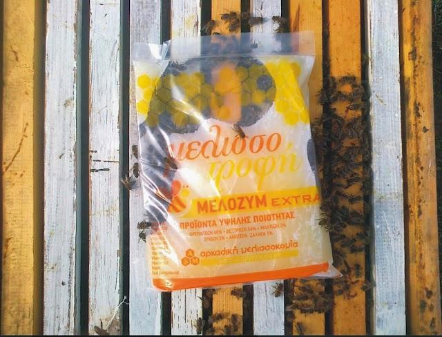 Φθινοπωρινή διέγερση μελισσιών με ζυμάρι ή σιρόπι: Η αλήθεια αποκαλύπτεται!