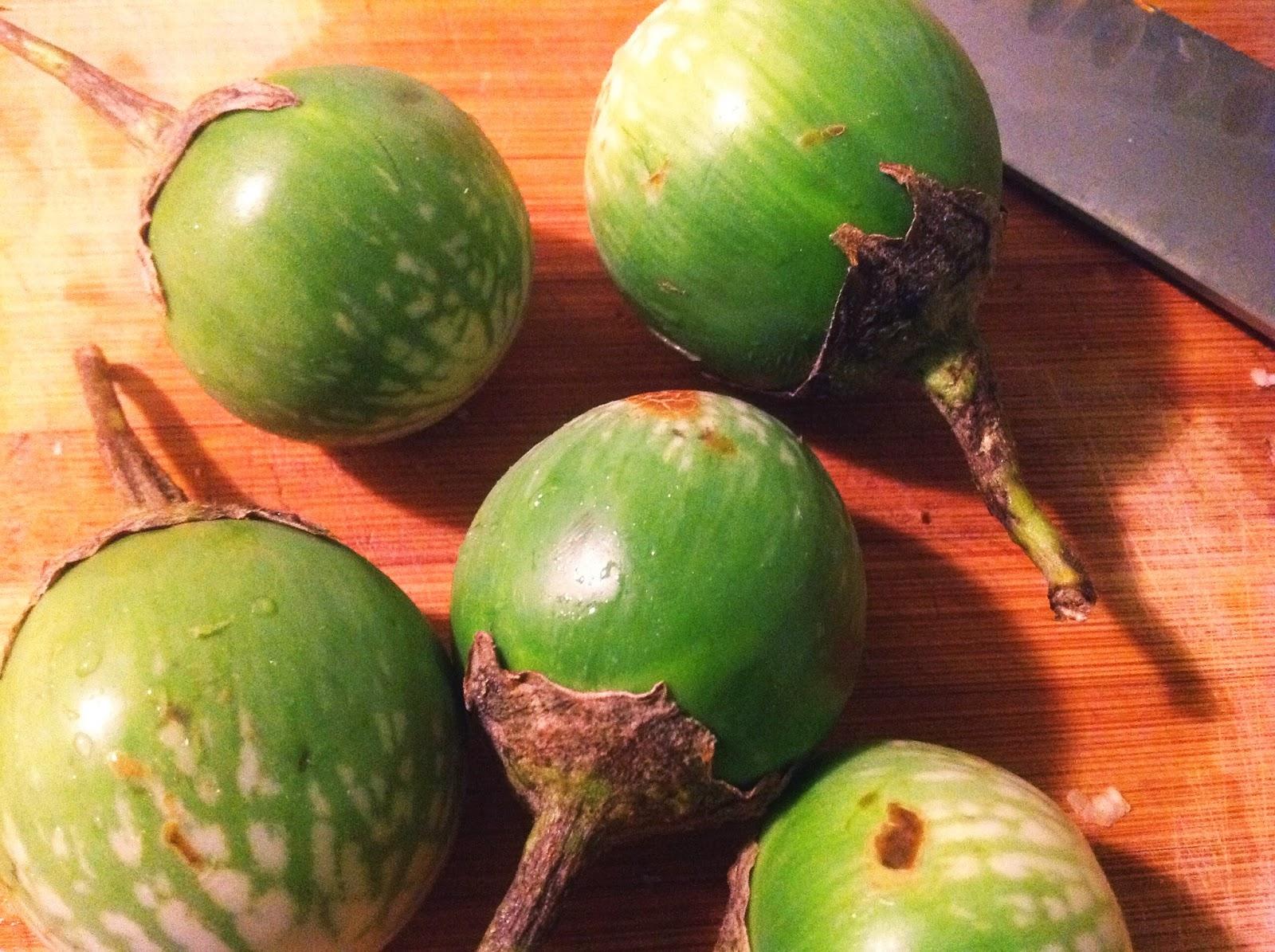 how to cook calabash squash