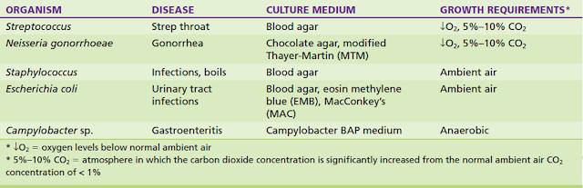 Contoh beberapa bakteri penyebab penyakit dan kebutuhan pertumbuhannya