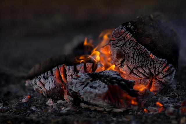 fuego cambio climático