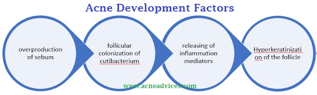 acne vulgaris pathophysiology diagram