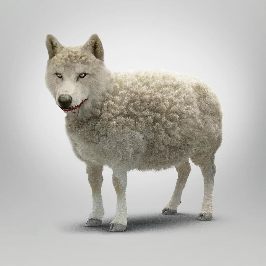 07-A-wolf-in-sheep-s-clothing-Marcio-Sa-www-designstack-co