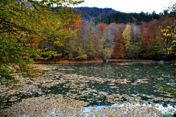 برنامج جولة بحيرة ابانت في مدينة بولو - شمال تركيا,