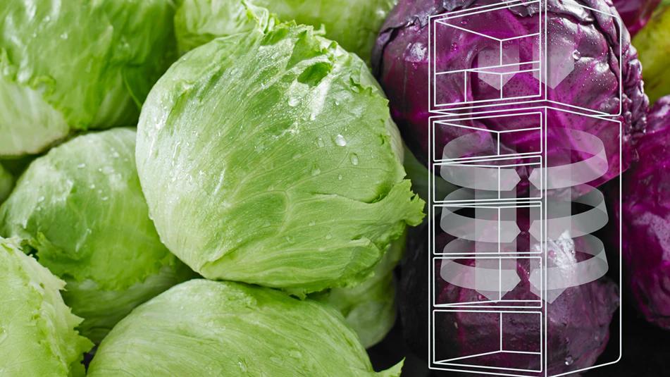 Thực phẩm ngon hơn với công nghệ làm lạnh nhiệt EvenTemp của Tủ lạnh Electrolux ETB2502J-A