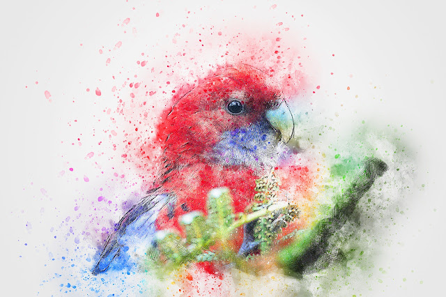 best birds painting