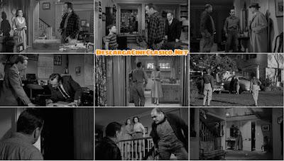Horas desesperadas (1955)