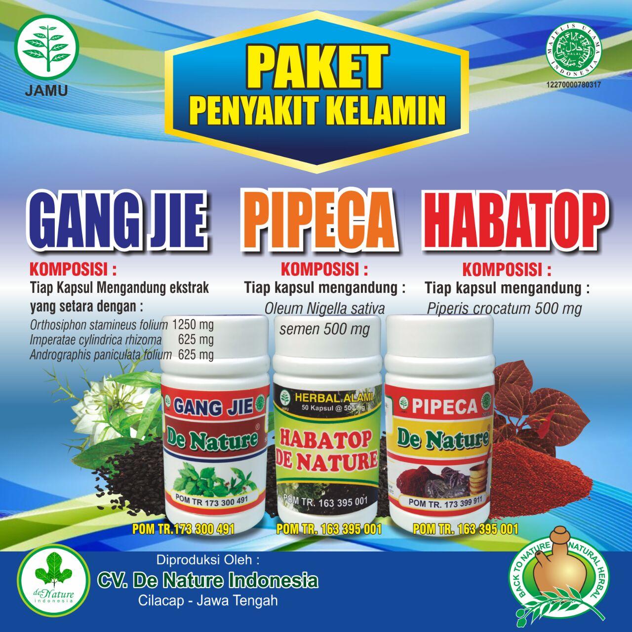 Obat Sipilis Ampuh Dan Paten Paling Dicari Di Indonesia Dokter Kelamin Herbal De Nature