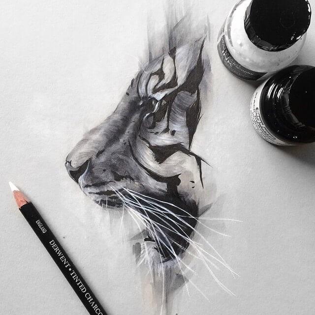 03-Tiger-SW-Whiteside-www-designstack-co