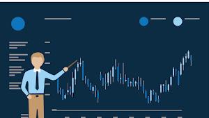 Ikhtisar Trading Dan Panduan Untuk Trader Pemula