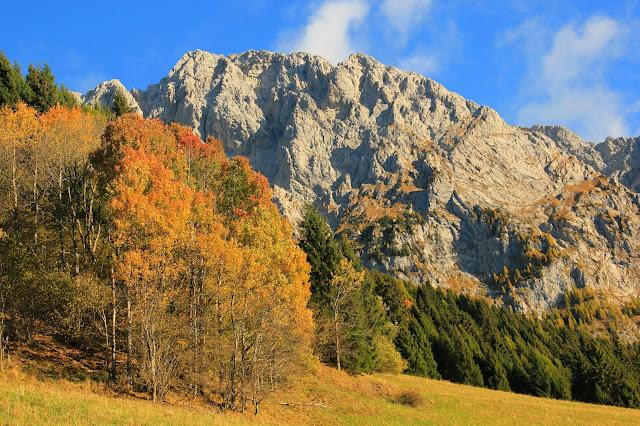 I colori dell'autunno a Collina di Forni Avoltri