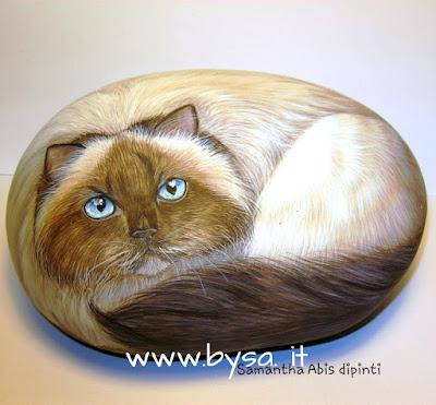 Ritratti di gatti persiani