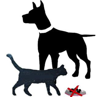 Silhuetteina koira, jolla valkoinen kaulapanta, sekä kissa, jonka edessä olevan ruokakupin päälle on piiirretty punainen rasti.