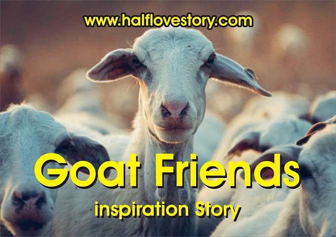 Baby Goat Friends    Motivational of two animal Story : Goats lover : Short Story
