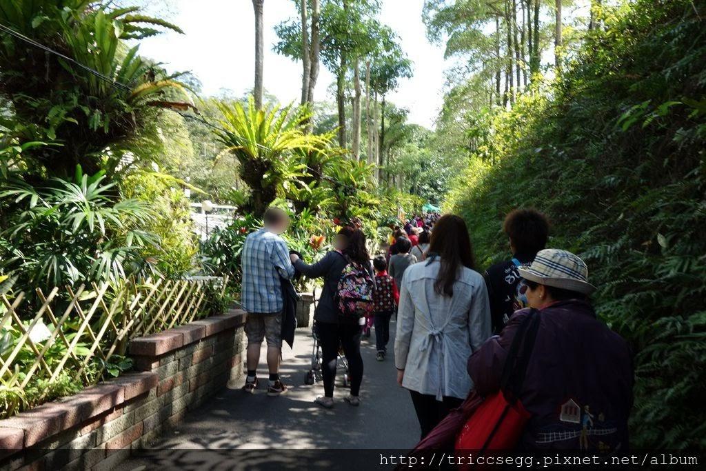 台北動物園(39).jpg