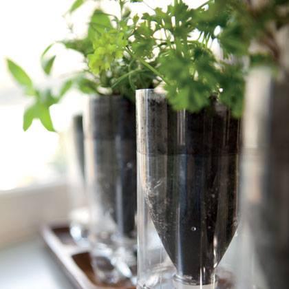 Plastic Bottle Herb Planters