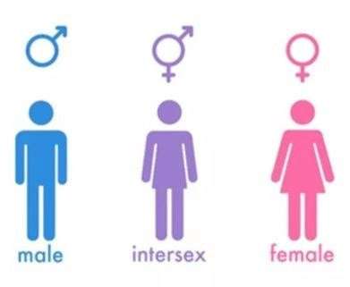 Kenya to include 'intersex' category along with male and female in the section on gender in next month's census