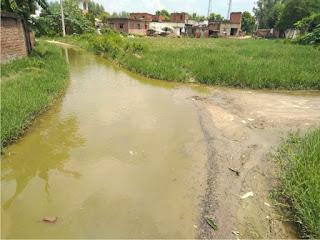 सड़क पर गंदा पानी रूकने से राहगीरों को आवागमन में होती है परेशानी   #NayaSaberaNetwork