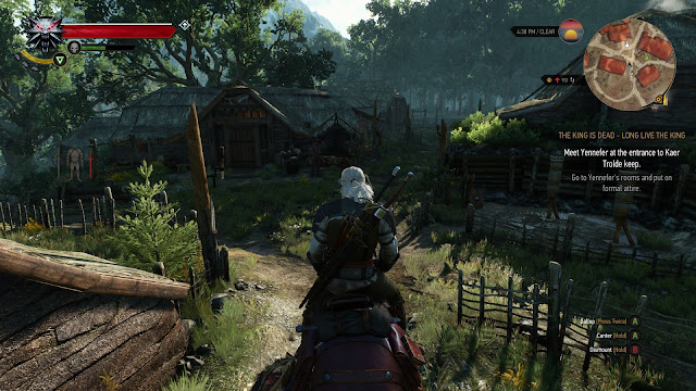 Wild hunt the witcher 3
