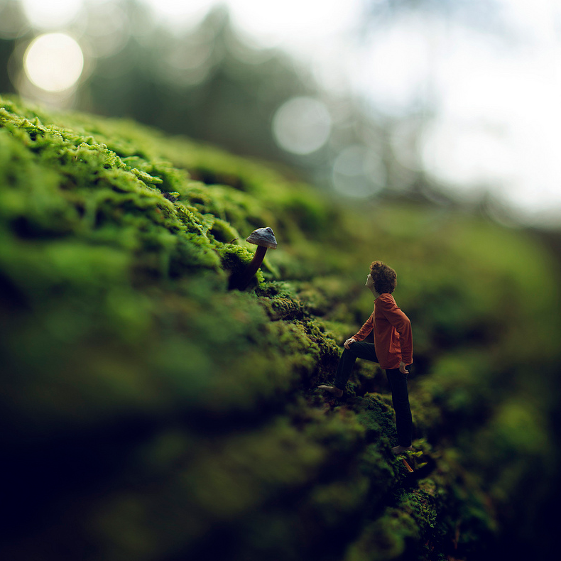 18-Shortcut-to-Mushroom-Zev-Hoover-zevhoo Surreal-Miniatures-Photo-Manipulations-www-designstack-co