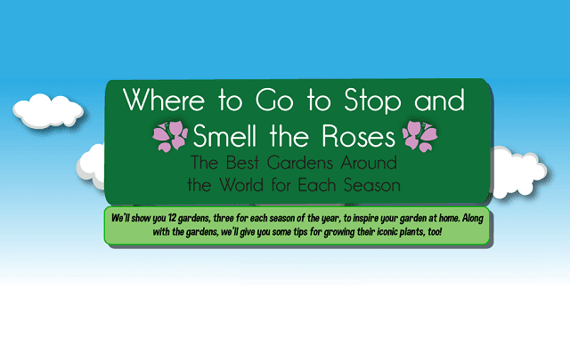 Where to Go to Stop and Smell the Roses