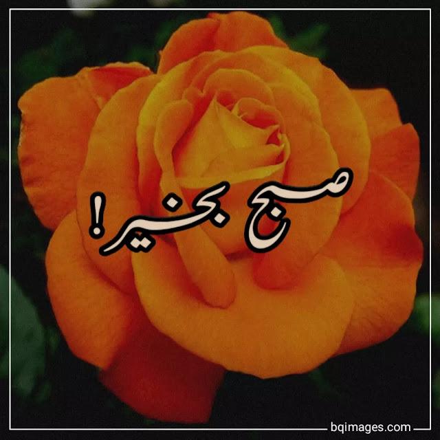 good morning urdu images