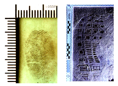 reference photograph for fingerprints and footwear impressions