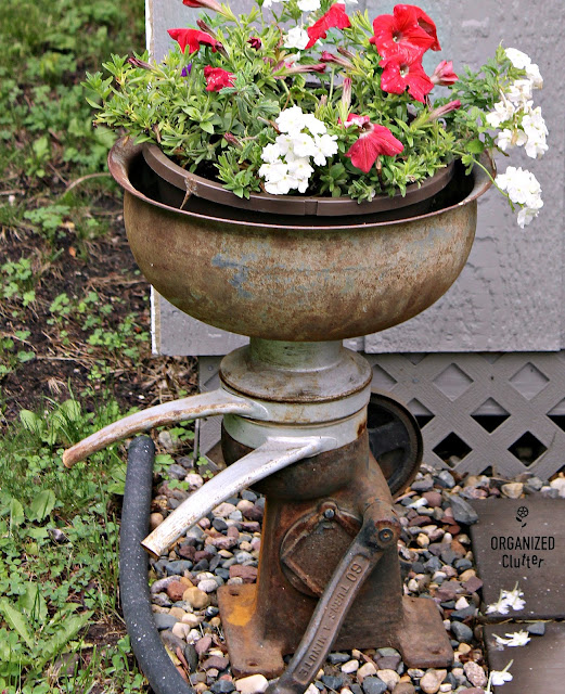 Junk Garden Cream Separator Flower Pot Holder