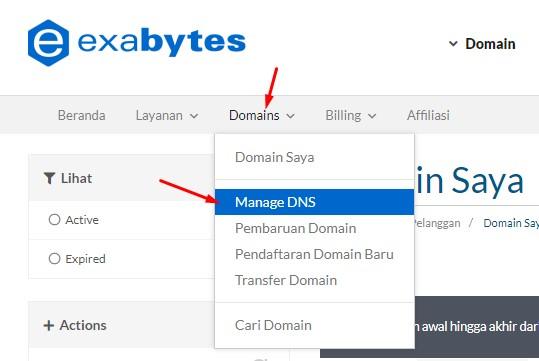 Free Domain, Domain Gratisan