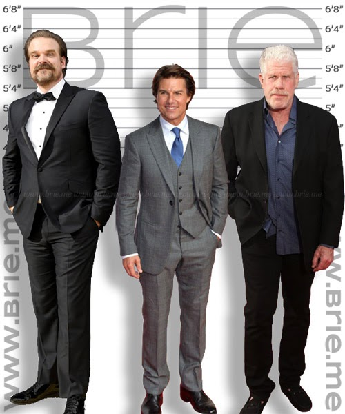 David Harbour, Tom Cruise and Ron Perlman height comparison