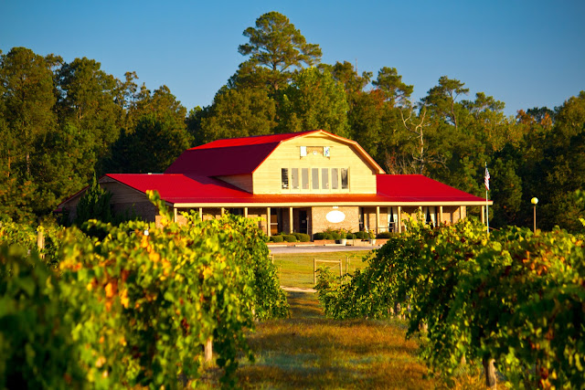 Gregory Vineyards in Johnston County, #OutaboutNC