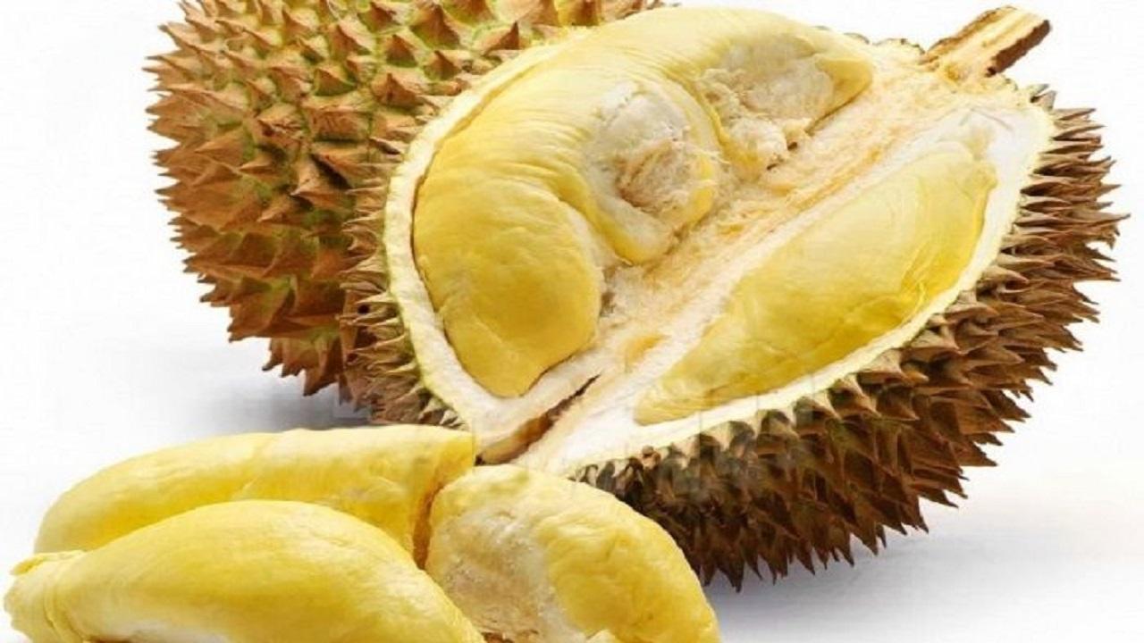 Arti Mimpi Kejatuhan Durian Ternyata Tak Ada Kaitannya dengan Pertanda Buruk, Berbahagialah Karena Bakal Dapat Rezeki Nomplok
