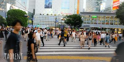 Shibuya crossing shibuya tokyo