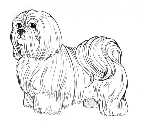 Dogs coloring pages 27