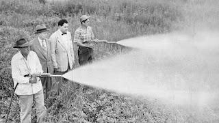 Fumigaciones con DDT