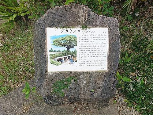 アガリヌカー(東井泉)の写真