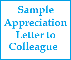 Appreciation messages and letters sample appreciation letter to letter to colleague informal appreciation letter to colleaguewhat to write in a appreciation note to colleague appreciation wordings for colleague thecheapjerseys Gallery