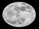 small thumbnail image of Moon with bad aspect ratio