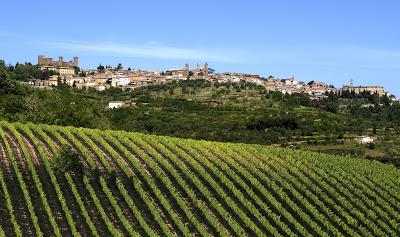 Montalcino Brunello miglior areale vino