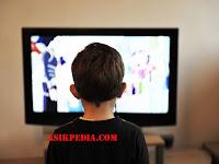 10 SIARAN TV YANG SAYA SUKAI DAN MENARIK HATI SAYA