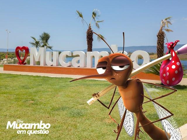 Atenção Mucambo, o período chuvoso chegou!