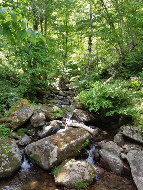 Dojuzan Kasugai Hike