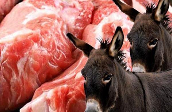 ما هي حقيقة انتشار لحم الحمير في مطاعم دمشق!