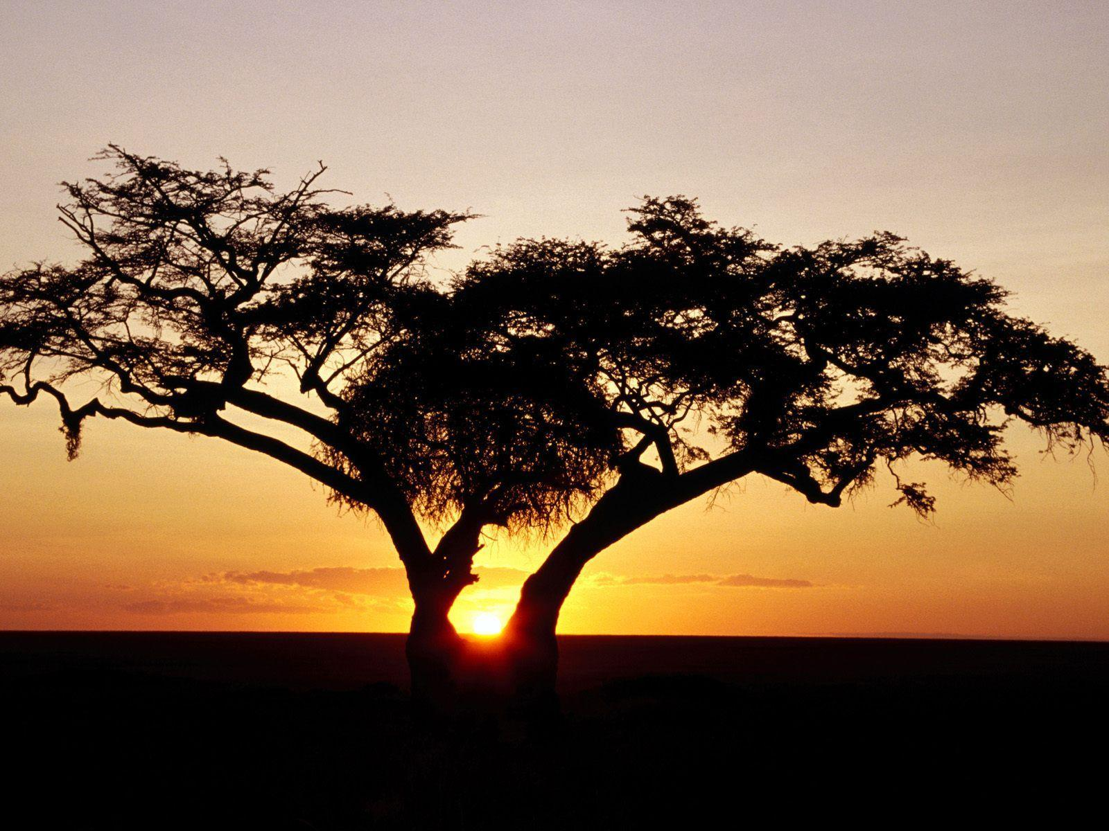 Sunrise, Africa desktop wallpapers