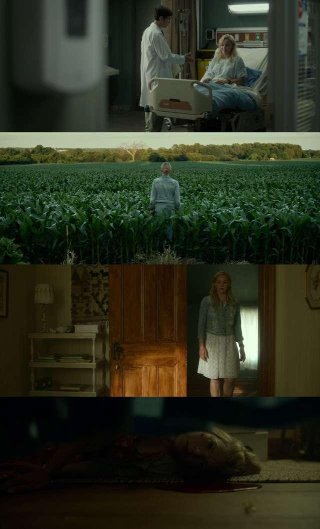 Lavender (2016) HD 1080p Latino