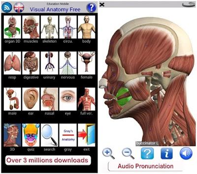 aplikasi kedokteran visual anatomy
