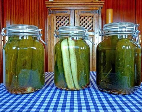 Easy Dill Pickles Potato Salad [Recipe]